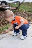 Αγόρι που παίρνει τα φύλλα Στοκ Εικόνες