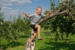 Αγόρι που πηδά από ένα δέντρο στοκ φωτογραφία