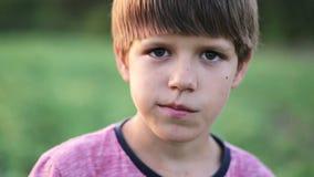 Αγόρι που στέκεται στον τομέα του οργανικού αγροκτήματος, που εξετάζει τη κάμερα και που τρώει το αγγούρι απόθεμα βίντεο