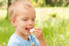αγόρι που τρώει λίγο πρόχε&i Στοκ Φωτογραφίες