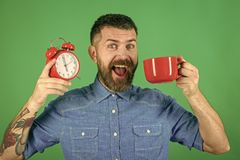 Αγόρι προσώπου για την κάλυψη περιοδικών Πορτρέτο προσώπου ατόμων στη advertisnent κόκκινη κούπα σας με το συναγερμό, τέλειο πρωί Στοκ φωτογραφία με δικαίωμα ελεύθερης χρήσης
