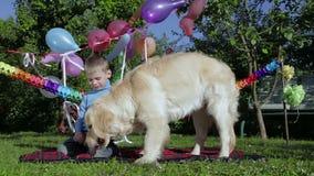 Αγόρι, σκυλί και καρπούζι απόθεμα βίντεο