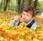 Αγόρι στο πάρκο Στοκ Εικόνες