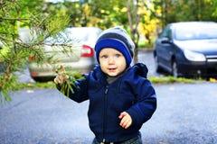 Αγόρι σχετικά με τις βελόνες πεύκων Στοκ Φωτογραφίες