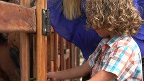 Αγόρι φοβισμένο του αλόγου φιλμ μικρού μήκους