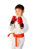 αγόρι aikido Στοκ Φωτογραφίες