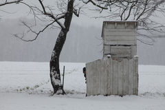 Αγόρι Amish που κρυφοκοιτάζει από outhouse το φράκτη Στοκ Εικόνα