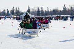 Αγώνας βαρκών δράκων πάγου Στοκ Φωτογραφίες