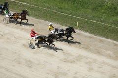 Αγώνας λουριών Στοκ φωτογραφία με δικαίωμα ελεύθερης χρήσης