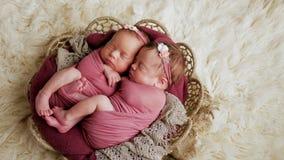Αδελφές διδύμων νεογέννητες στο τύλιγμα και σε ένα καλάθι στοκ εικόνα