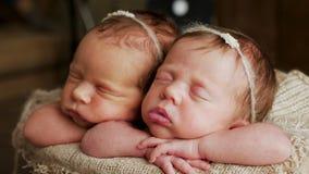 Αδελφές διδύμων νεογέννητες στο τύλιγμα στοκ εικόνες