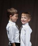 αδελφοί δύο Στοκ Εικόνες