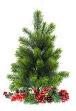 Αειθαλές χριστουγεννιάτικο δέντρο με το κόκκινο decoraton Στοκ Φωτογραφίες
