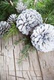 Αειθαλής κλάδος δέντρων έλατου και άσπρη κινηματογράφηση σε πρώτο πλάνο κώνων πεύκων στο ξύλινο υπόβαθρο στοκ φωτογραφίες