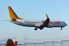 Αερογραμμές Boeing 737-800 Pegasus Στοκ εικόνα με δικαίωμα ελεύθερης χρήσης