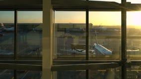 Αεροπλάνα της British Airways στην ποδιά διαδρόμων στην ανατολή, αερολιμένας Heathrow, τερματικό πέντε, Λονδίνο, Αγγλία απόθεμα βίντεο