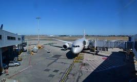Αεροπλάνο εναέριων διαδρόμων Jetstar στον αερολιμένα του Σίδνεϊ νέα νότια κοιλάδα Ουαλία κυνηγών σταφυλιών πεδίων της Αυστραλίας  στοκ φωτογραφία