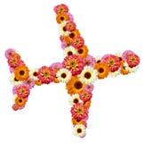 αεροπλάνο λουλουδιών Στοκ φωτογραφίες με δικαίωμα ελεύθερης χρήσης
