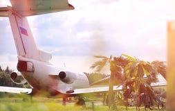 Αεροπλάνο στη ζούγκλα Το αεροπλάνο προσγειώθηκε στην πυκνή βλάστηση Στοκ εικόνα με δικαίωμα ελεύθερης χρήσης