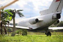 Αεροπλάνο στη ζούγκλα Το αεροπλάνο προσγειώθηκε στην πυκνή βλάστηση Στοκ εικόνες με δικαίωμα ελεύθερης χρήσης
