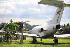Αεροπλάνο στη ζούγκλα Το αεροπλάνο προσγειώθηκε στην πυκνή βλάστηση Στοκ Φωτογραφίες