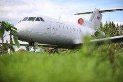 Αεροπλάνο στη ζούγκλα Το αεροπλάνο προσγειώθηκε στην πυκνή βλάστηση Στοκ φωτογραφία με δικαίωμα ελεύθερης χρήσης
