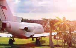 Αεροπλάνο στη ζούγκλα Το αεροπλάνο προσγειώθηκε στην πυκνή βλάστηση Στοκ Εικόνα