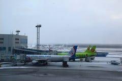Αεροπλάνα στη δίοδο πληρωμένος η Μόσχα χώρος στάθμευσης domodedovo αερολιμένων Στοκ Φωτογραφία