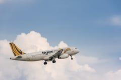 Αεροπλάνο εναέριων διαδρόμων τιγρών που πετά στον ουρανό Στοκ φωτογραφία με δικαίωμα ελεύθερης χρήσης