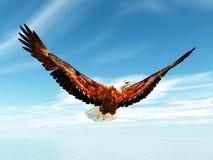 Αετός θάλασσας απεικόνιση αποθεμάτων