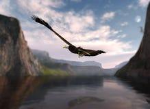 αετός πέρα από το πετώντας στα ύψη ύδωρ διανυσματική απεικόνιση