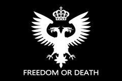 αετός που διευθύνεται διπλός Στοκ φωτογραφία με δικαίωμα ελεύθερης χρήσης