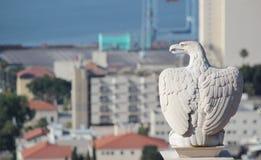Αετός φυλάκων Στοκ Φωτογραφία