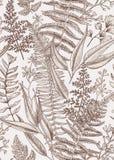 αζαλεών floral απεικόνισης διανυσματικός τρύγος ύφους προτύπων άνευ ραφής Στοκ εικόνα με δικαίωμα ελεύθερης χρήσης