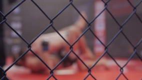 Αθλητές στην ακραία μικτή αθλητισμός σειρά MMA πρωταθλημάτων ανταγωνισμού πολεμικών τεχνών δαχτυλιδιών Οκτάγωνο δαχτυλίδι για τις απόθεμα βίντεο