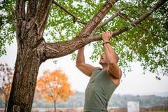 Αθλητής που κάνει το τράβηγμα-UPS στο δέντρο στο πάρκο Στοκ Εικόνες