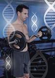Αθλητικά κατάλληλα βάρη ανύψωσης ατόμων στη γυμναστική με τη γενετική διεπαφή υγείας της βιολογίας στοκ φωτογραφία με δικαίωμα ελεύθερης χρήσης