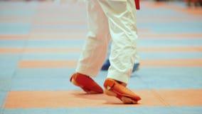 Αθλητικά παιδιά - θηλυκοί αθλητικοί τύποι karate απόθεμα βίντεο