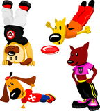 αθλητική ένδυση σκυλιών διανυσματική απεικόνιση