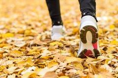 Αθλητική jogging έννοια Στοκ εικόνες με δικαίωμα ελεύθερης χρήσης