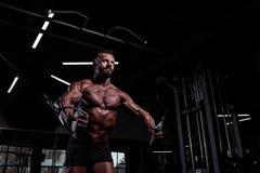 Αθλητικός τύπος στη γυμναστική Μυϊκό αθλητικό άτομο που κάνει τις θωρακικές ασκήσεις που χρησιμοποιούν τη μηχανή διασταυρώσεων κα Στοκ Φωτογραφίες