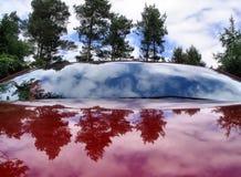 αθλητικό δάσος αυτοκινή&t στοκ εικόνες