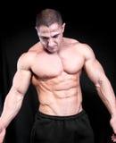 αθλητικό ελκυστικό αρσενικό οικοδόμων σωμάτων προκλητικό στοκ εικόνα με δικαίωμα ελεύθερης χρήσης