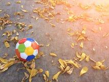 Αθλητισμός ποδοσφαίρου Στοκ φωτογραφία με δικαίωμα ελεύθερης χρήσης