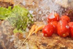 αθλητισμός σιτηρεσίου Λαχανικά και γλυκό νερό Στοκ φωτογραφίες με δικαίωμα ελεύθερης χρήσης