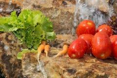 αθλητισμός σιτηρεσίου Λαχανικά και γλυκό νερό Στοκ εικόνες με δικαίωμα ελεύθερης χρήσης
