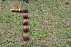 Αθλητισμός Woodball ένας τρόπος να παιχτεί ένας αθλητισμός όπως το γκολφ Στοκ εικόνα με δικαίωμα ελεύθερης χρήσης