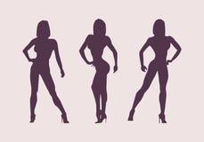 Αθλητές σκιαγραφιών γυναικών Θέτει τα bodybuilders και το fitnesbikini διανυσματική απεικόνιση