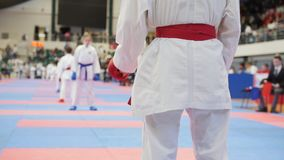 Αθλητικά παιδιά - αθλητικοί τύποι κοριτσιών karate - που κοιτάζει στον ανταγωνιστή απόθεμα βίντεο