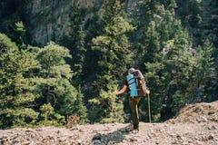 Αθλητική αρσενική οδοιπορία οδοιπόρων με το σακίδιο πλάτης στο δάσος Στοκ Εικόνα